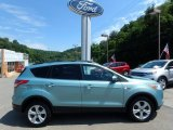 2013 Frosted Glass Metallic Ford Escape SE 1.6L EcoBoost #114901537