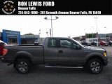 2011 Sterling Grey Metallic Ford F150 STX SuperCab 4x4 #114975512