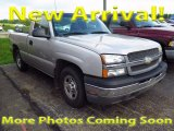 2004 Silver Birch Metallic Chevrolet Silverado 1500 Regular Cab #115273184