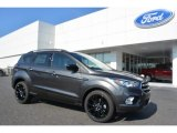 2017 Magnetic Ford Escape SE #115563213