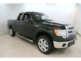 2014 Green Gem Ford F150 XLT SuperCab 4x4 #115591212