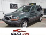 2002 Onyx Green Pearlcoat Jeep Grand Cherokee Laredo 4x4 #115758706