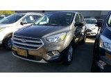 2017 Magnetic Ford Escape SE #115759435