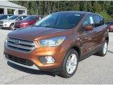 2017 Canyon Ridge Ford Escape SE #115924408