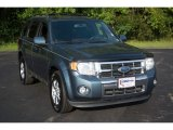 2010 Steel Blue Metallic Ford Escape Limited V6 4WD #115973729