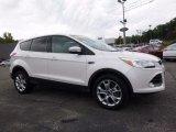 2013 White Platinum Metallic Tri-Coat Ford Escape SEL 1.6L EcoBoost 4WD #115973557