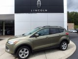 2013 Ginger Ale Metallic Ford Escape SE 1.6L EcoBoost 4WD #116076242