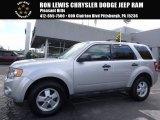 2012 Ingot Silver Metallic Ford Escape XLT 4WD #116579560