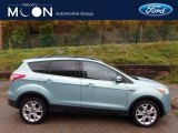 2013 Frosted Glass Metallic Ford Escape SEL 2.0L EcoBoost 4WD #116665555