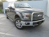 2016 Magnetic Ford F150 XLT SuperCrew 4x4 #116871173