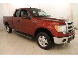 2014 Sunset Ford F150 XLT SuperCab 4x4 #116944708