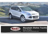 2013 Ingot Silver Metallic Ford Escape SEL 2.0L EcoBoost #116992941