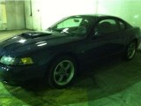 2001 True Blue Metallic Ford Mustang GT Coupe #117459571