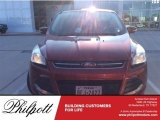 2013 Ruby Red Metallic Ford Escape SEL 1.6L EcoBoost #117761603