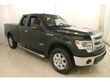 2014 Green Gem Ford F150 XLT SuperCab 4x4 #117826775