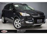 2013 Tuxedo Black Metallic Ford Escape SEL 2.0L EcoBoost #117826698