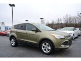 2013 Ginger Ale Metallic Ford Escape SE 1.6L EcoBoost #117867334
