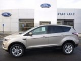 2017 White Gold Ford Escape SE 4WD #118032741