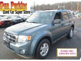 2010 Steel Blue Metallic Ford Escape XLT V6 4WD #118060937