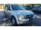 2009 Brilliant Silver Metallic Ford Escape XLT #118061281