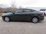 2015 Guard Metallic Ford Fusion SE #118094942