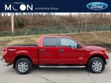 2014 Race Red Ford F150 XLT SuperCrew 4x4 #118200501