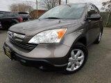 2009 Urban Titanium Metallic Honda CR-V EX 4WD #118385810