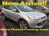 2013 Ingot Silver Metallic Ford Escape SE 2.0L EcoBoost #118434775