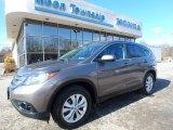 2014 Urban Titanium Metallic Honda CR-V EX AWD #118458651