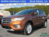 2017 Canyon Ridge Ford Escape SE #118458448