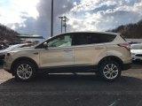 2017 White Gold Ford Escape SE 4WD #118872505