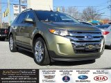 2013 Ginger Ale Metallic Ford Edge SEL EcoBoost #118928560