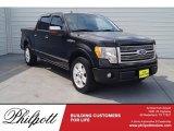 2010 Tuxedo Black Ford F150 Platinum SuperCrew #118989620