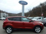 2014 Sunset Ford Escape SE 2.0L EcoBoost 4WD #118989604