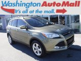 2013 Ginger Ale Metallic Ford Escape SE 1.6L EcoBoost 4WD #119135064