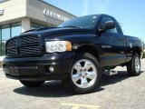 2004 Black Dodge Ram 1500 Rumble Bee Regular Cab 4x4 #11883958