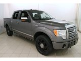 2010 Sterling Grey Metallic Ford F150 Platinum SuperCrew 4x4 #119227557