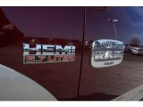 Ram 1500 Badges and Logos