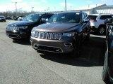 2017 Walnut Brown Metallic Jeep Grand Cherokee Overland 4x4 #119385025