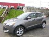 2014 Sterling Gray Ford Escape SE 2.0L EcoBoost 4WD #119792755