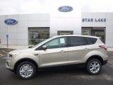 2017 White Gold Ford Escape SE 4WD #119970858