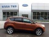 2017 Canyon Ridge Ford Escape Titanium 4WD #119989225