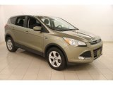 2013 Ginger Ale Metallic Ford Escape SE 2.0L EcoBoost 4WD #119989402