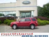 2009 Sangria Red Metallic Ford Escape Limited 4WD #11970465