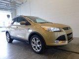 2014 Karat Gold Ford Escape Titanium 2.0L EcoBoost 4WD #120217670