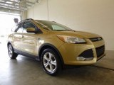 2014 Karat Gold Ford Escape SE 1.6L EcoBoost 4WD #120560564