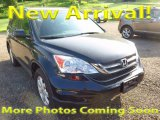 2011 Crystal Black Pearl Honda CR-V SE 4WD #120560723