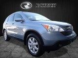 2008 Glacier Blue Metallic Honda CR-V EX-L 4WD #120560522