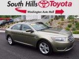 2013 Ginger Ale Metallic Ford Taurus SEL #120660076