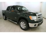 2014 Green Gem Ford F150 XLT SuperCrew 4x4 #120680434